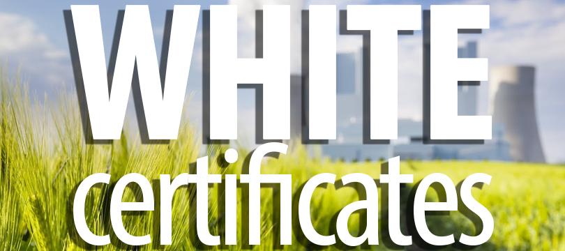 Raport – białe certyfikaty 05.06. 2018 r.